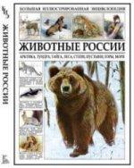 Животные России. Арктика, тундра, тайга, леса, степи, пустыни, горы, моря