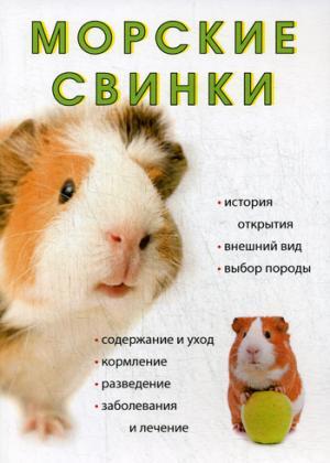Морские свинки.