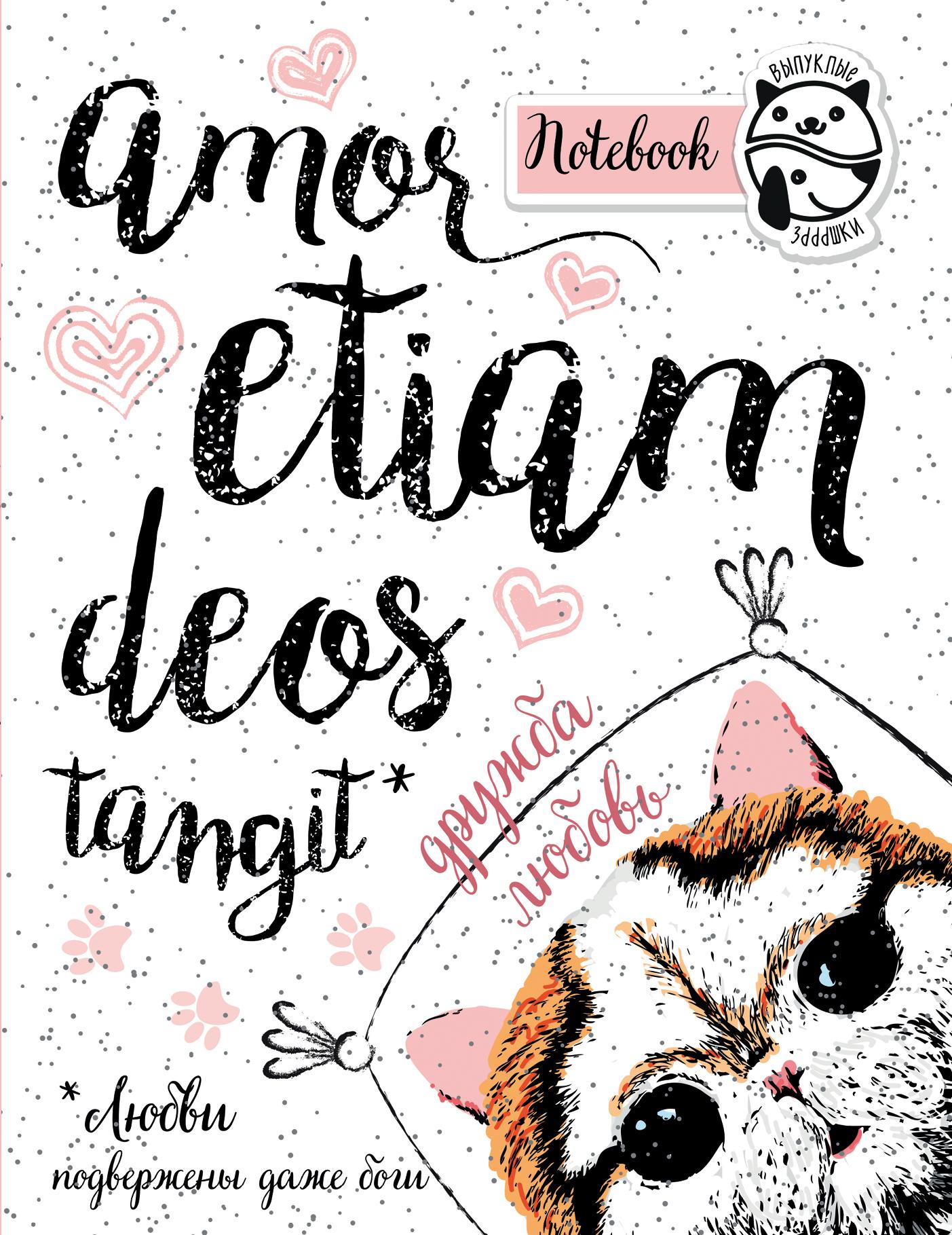 Блокнот Amor etiam deos tangit (Любви подвержены даже боги)