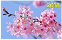 Весенний цвет. Настенный трехблочный квартальный календарь на 2018 год с курсором в индивидуальной упаковке (Европакет)