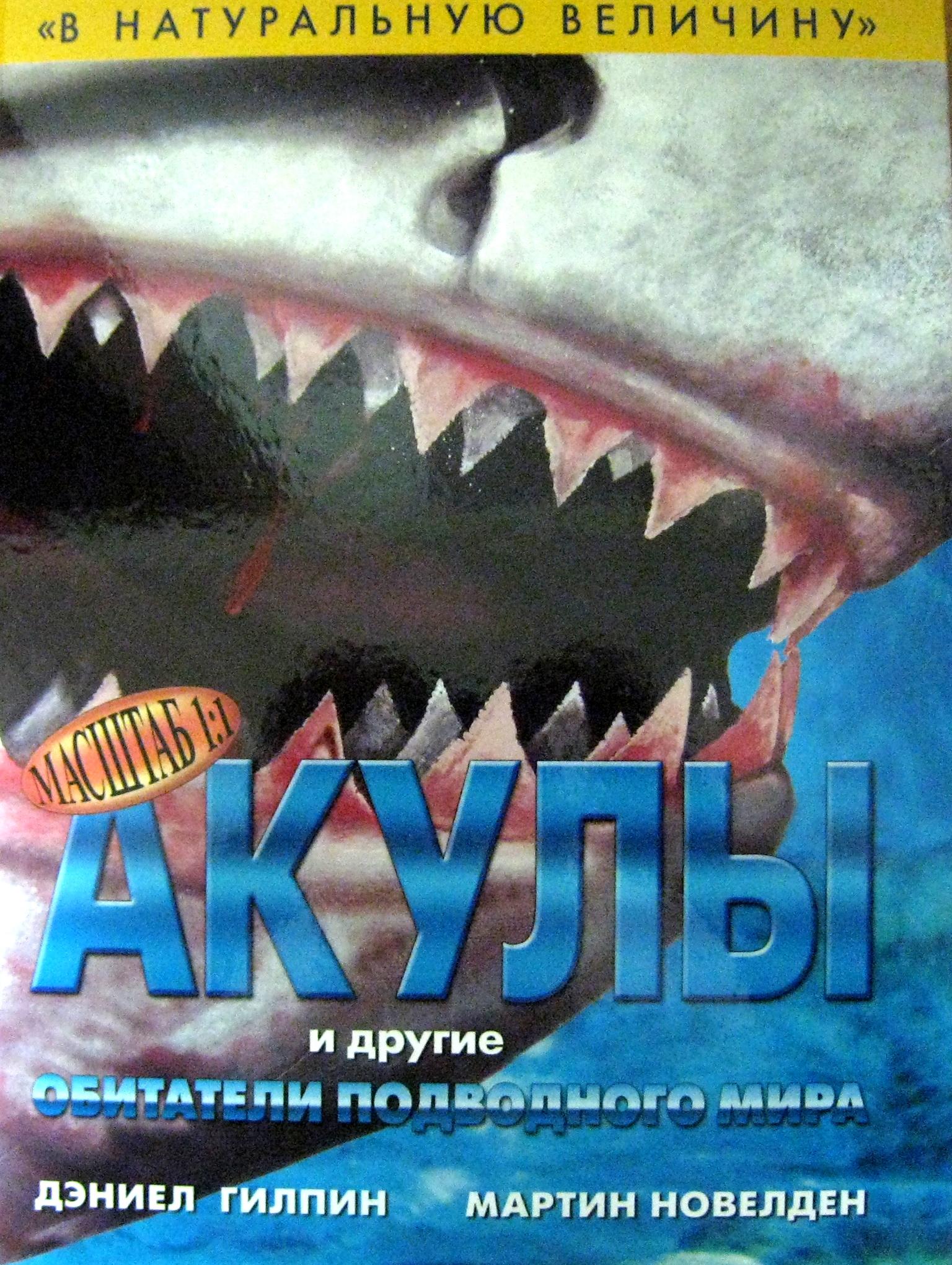 Ниола. В натуральную величину. Акулы и другие обитатели подводного мира.
