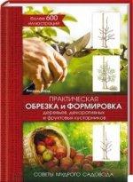Практическая обрезка и формировка деревьев, декоративных и фруктовых кустарников. Советы мудрого садовода