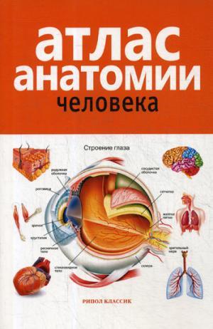 Атлас анатомии человека. 2-е изд., доп. и перераб. Марысаев В.Б.