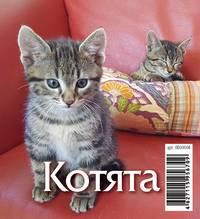 Котята. Календарь перекидной настольный Домик на 2018 год