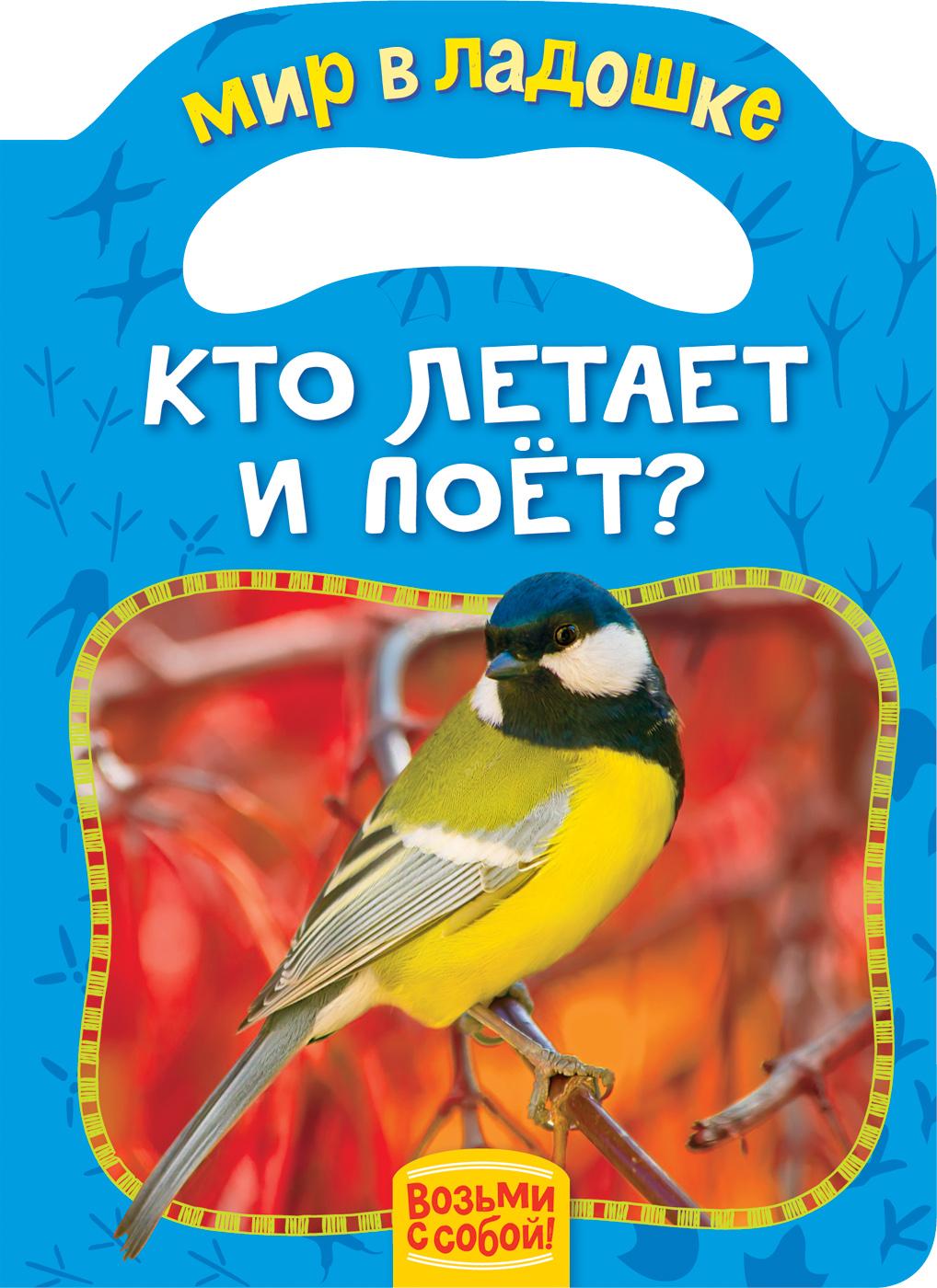 Кто летает и поет? (МвЛ)