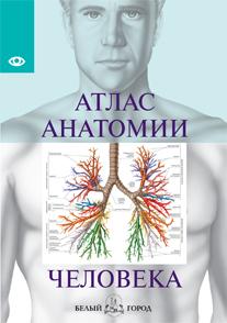 Атлас анатомии человека. Все органы человеческого тела