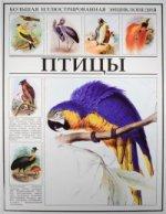 Птицы. Большая иллюстрированная энциклопедия