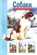 Собаки. Школьный путеводитель