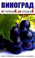 Виноград.От черенка до урожая