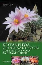 Круглый год среди кактусов:советы по уходу