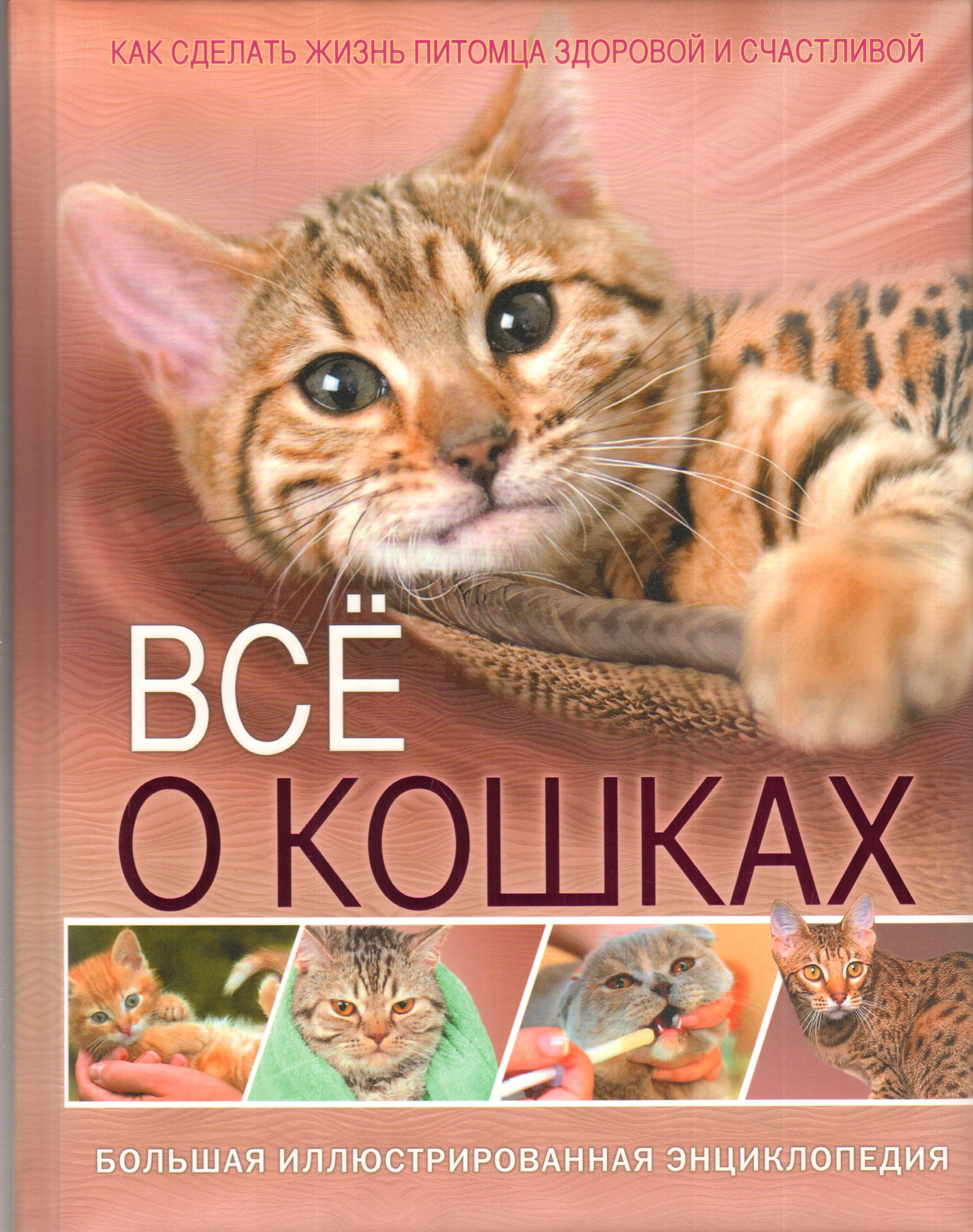 Всё о кошках.Большая иллюстрированная энциклопедия