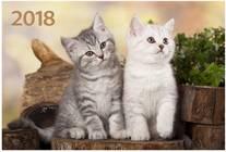Два котёнка. Настенный трехблочный квартальный календарь на 2018 год с курсором в индивидуальной упаковке (Европакет)