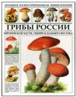 Грибы России европейской части, Сибири и Дальнего Востока. Энциклопедия