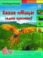 Какие птицы самые красивые?