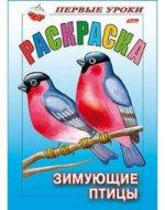 Раскраска: Зимующие птицы