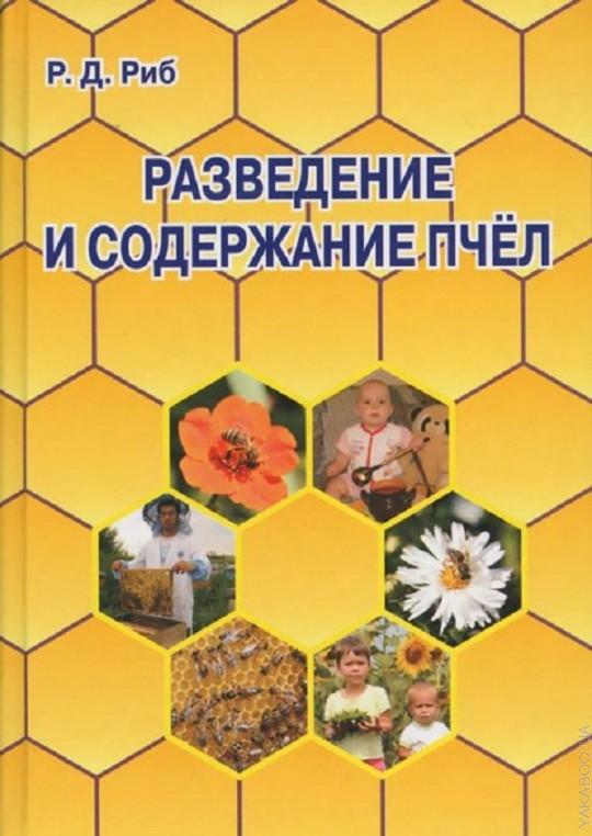 Разведение и содержание  пчел.