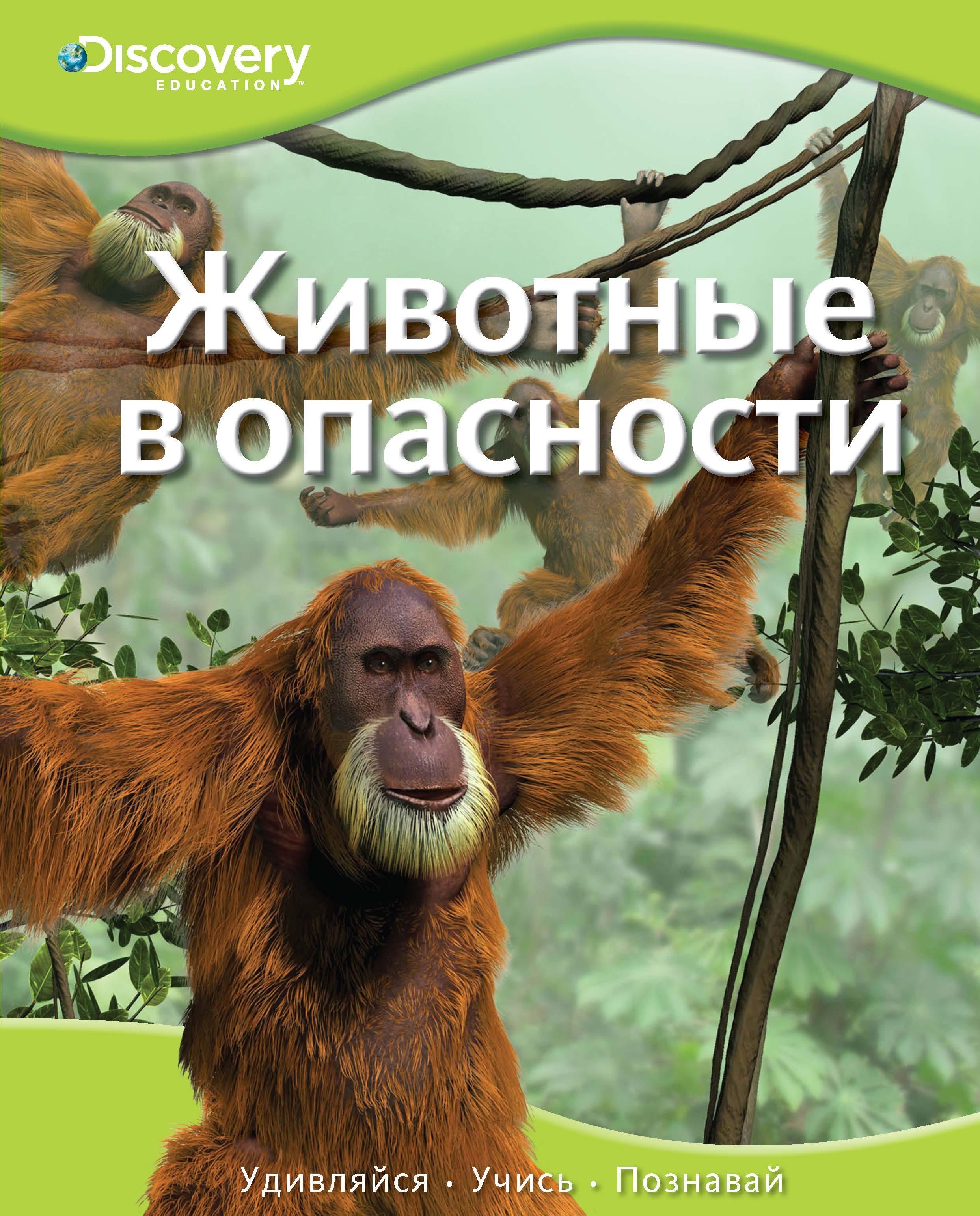 Животные в опасности