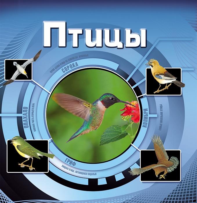Птицы  (3D)