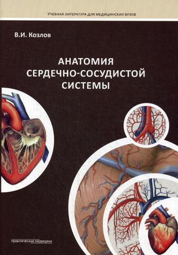 Анатомия сердечно-сосудистой системы. Козлов В.И.
