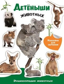 Детеныши животных (6+)