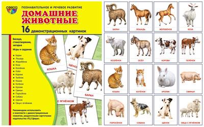 Демонстрационные картинки Супер Домашние животные.16 демонстр.картинок с текстом